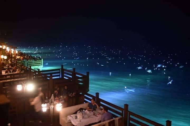 Do Darya Restaurants